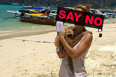 SAY NO to animal photo-prop !!